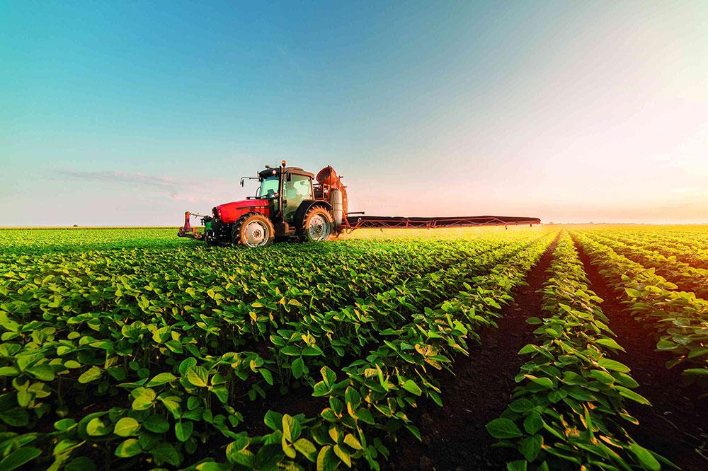 agronegócio-Tocantins Agronegócio, turismo e educação serão beneficiados com ampliação de conectividade no Brasil