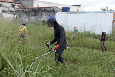 a321d2685760703bc7475bad444b6d3d.jpeg Exemplo | Araguainenses têm até esta semana para limparem lotes e evitarem multa