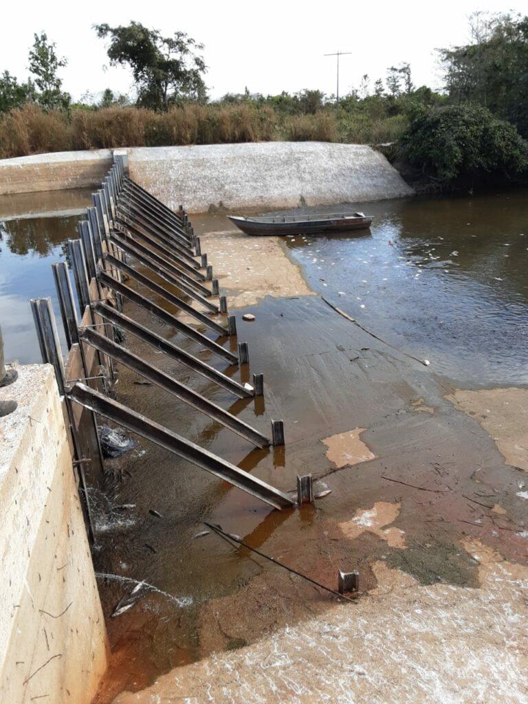 peixe-1-768x1024 Morte de peixes em barragem no Rio Dueré e a regularidade ambiental do empreendimento serão apurados pelo MPE