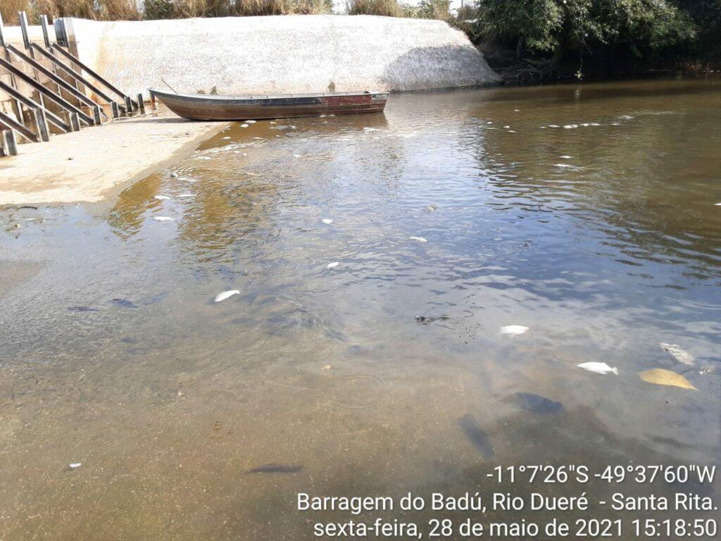 peixe-5-1024x768 Morte de peixes em barragem no Rio Dueré e a regularidade ambiental do empreendimento serão apurados pelo MPE