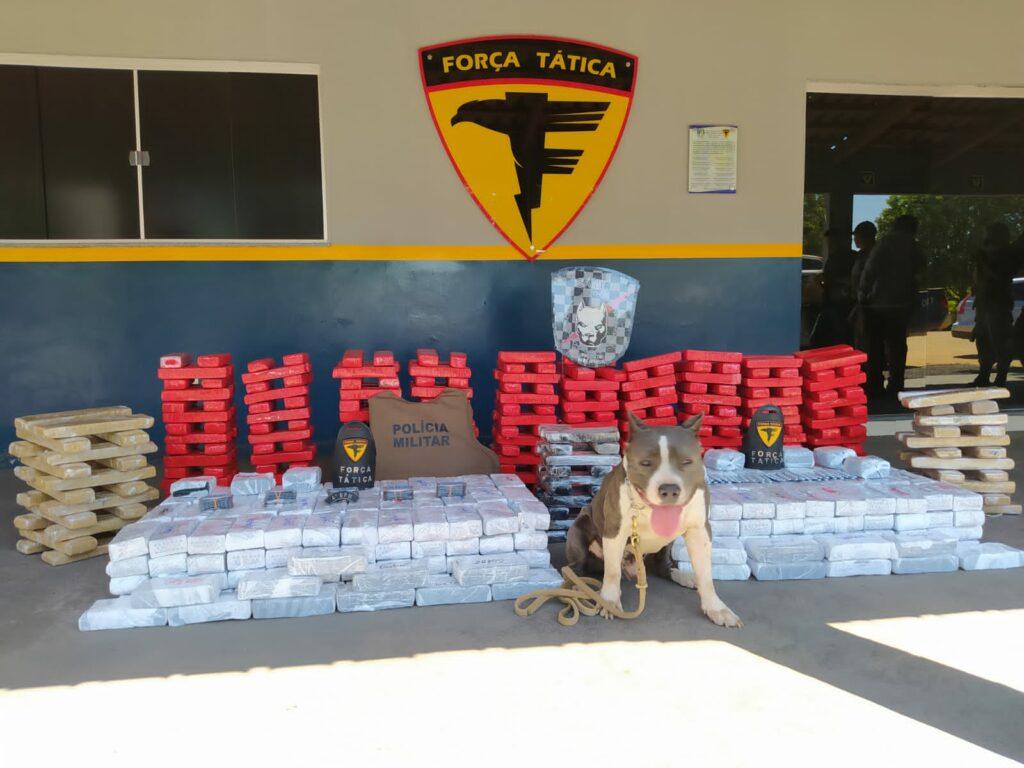 tradd-1024x768 Polícia Militar apreende mais de 200 quilos de maconha em Gurupi