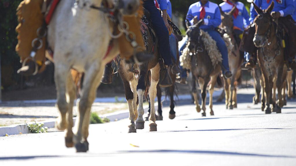 TROPEIROS-FOTO-LIA-MARA-8-1024x576 Comitiva de Tropeiros de Taquaruçu inicia peregrinação ao Senhor do Bonfim